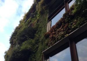 Taller de arquitectura sustentable V