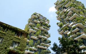 Taller de arquitectura sustentable III