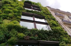 Vegetación para la arquitectura sustentable